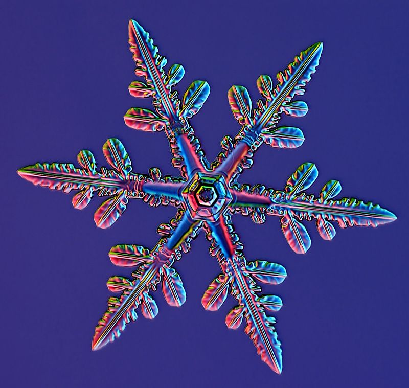 Real snowflake google search snow flakes pinterest for How to make a real paper snowflake