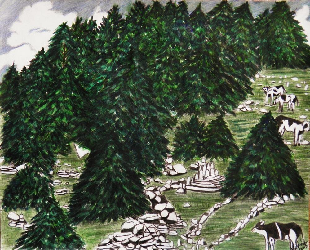 Mucche al pascolo @GIGARTE.com