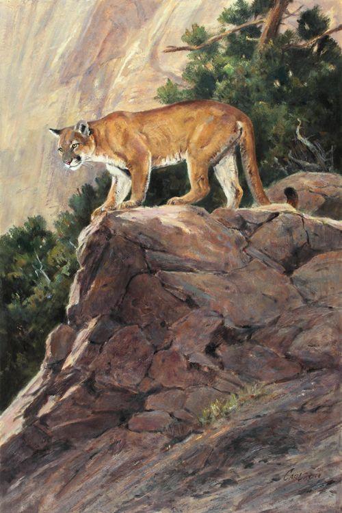 Prix de West Opening Weekend Wildlife art, Heritage