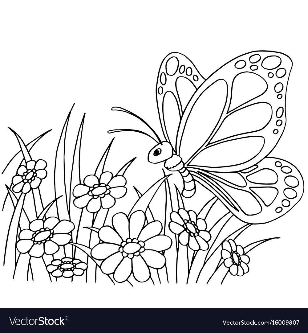 Coloring Pictures Of Flowers And Butterflies Luxury Coloring Pages Butterfly And Flower Coloring Pages In 2020 Butterfly Coloring Page Cartoon Butterfly Coloring Pages [ 1080 x 1000 Pixel ]