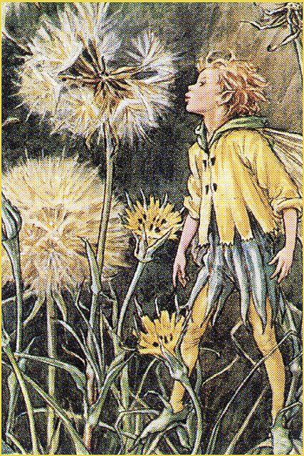 The Dandelion Fairy - Cicely Mary Barker