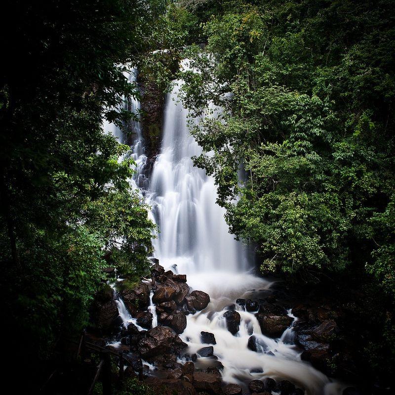 Costa Rica Mato Grosso do Sul fonte: i.pinimg.com