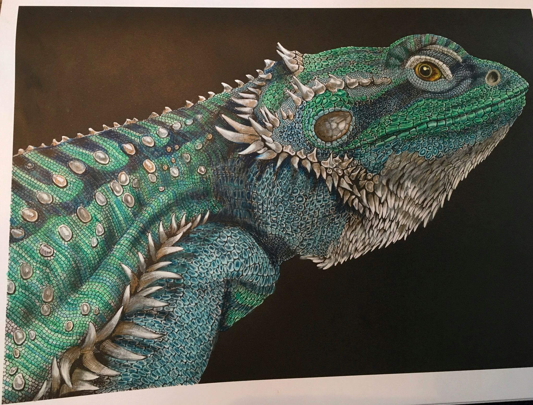 Intricate Ink Tim Jeffs Bearded Dragon page 2 | Coloring | Pinterest
