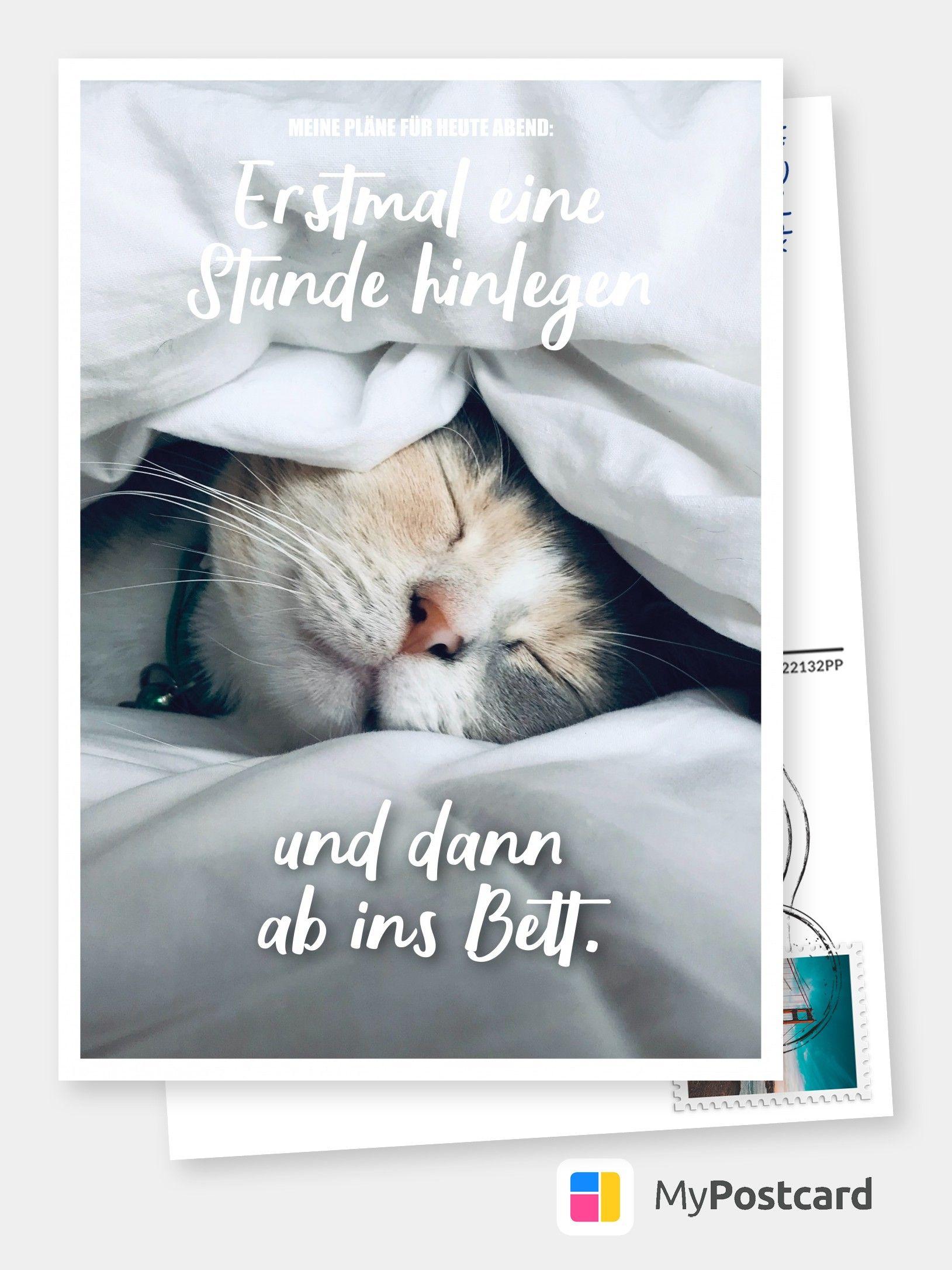 Erstmal Eine Stunde Hinlegen Und Dann Ab Ins Bett Witzige Karten Spruche Echte Postkarten Online Versenden Lustige Postkarten Lustige Grusskarten Karten Spruche