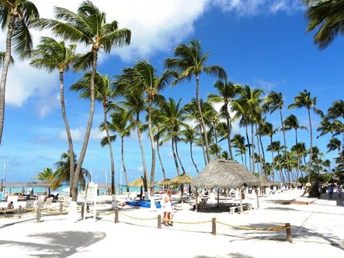The Best Beaches In Caribbean Palm Beach Antigua Barbados And Pink Sand
