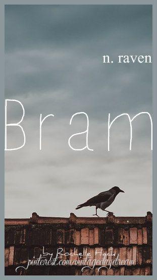 Scottish Irish Gaelic Boy Name Bram Meaning Raven