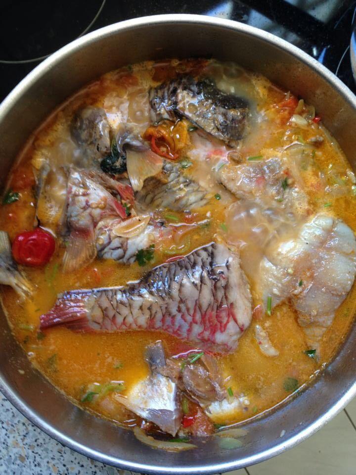 Trop trop bon court bouillon de perroquet poisson - Cuisine creole antillaise ...