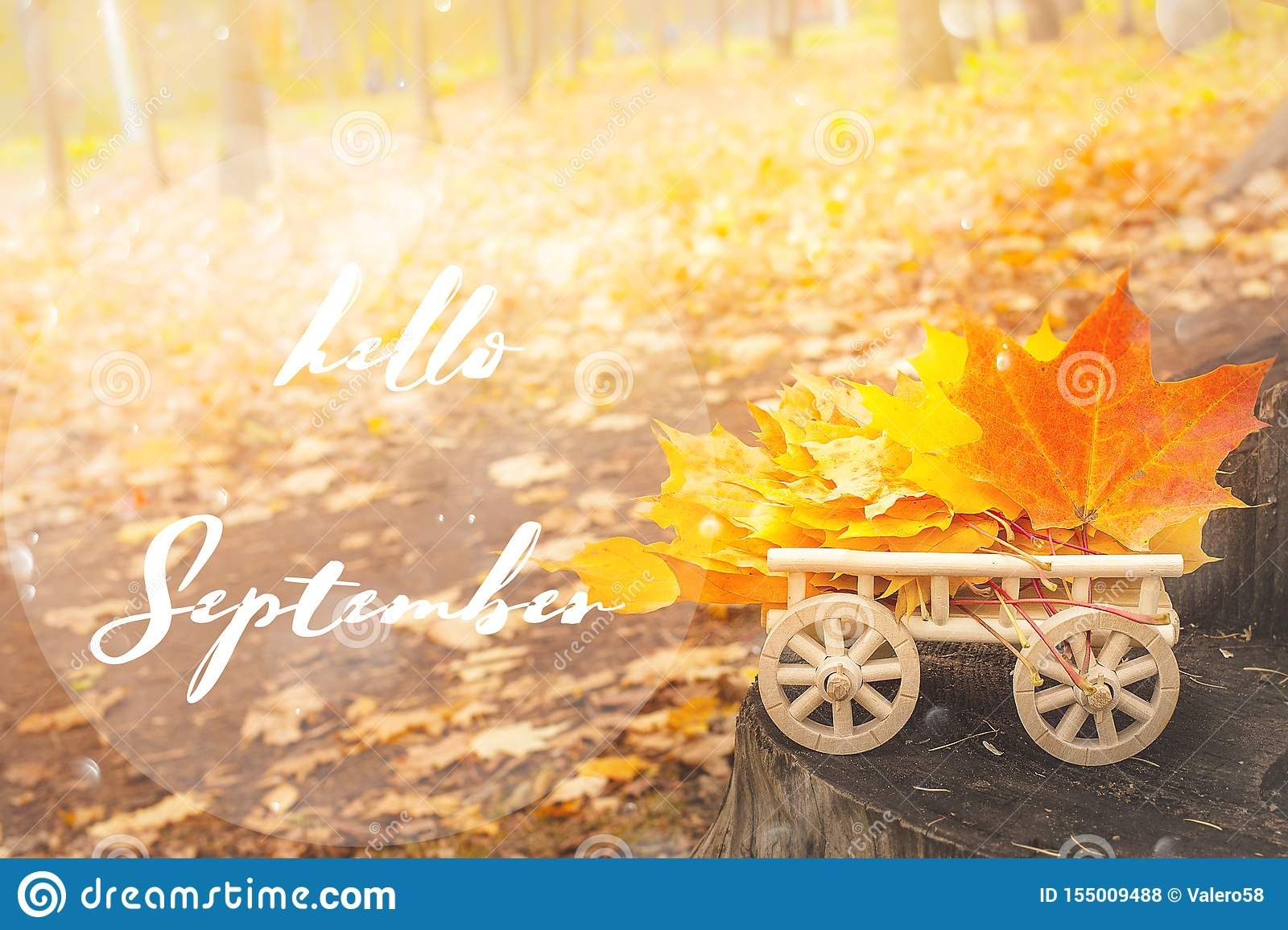Photo about HELLO SEPTEMBER lettering card. maple leaves on a wooden cart. Autumn background concept. Maple, yellow foliage, wooden stump. Image of tree, wood, retro - 155009488 #helloseptember