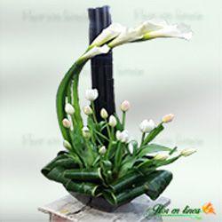 Arreglo De Alcatraces Y Tulipanes Arreglo Floral De