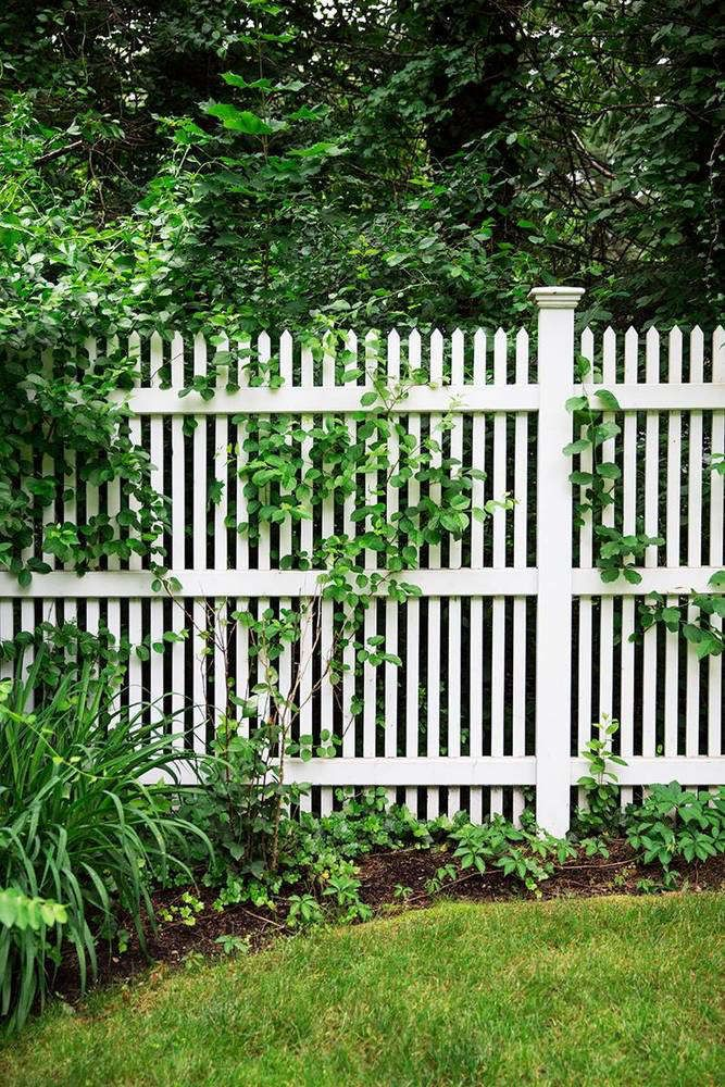 150 Fence Designs And Ideas Puutarha Sisapihat Piha