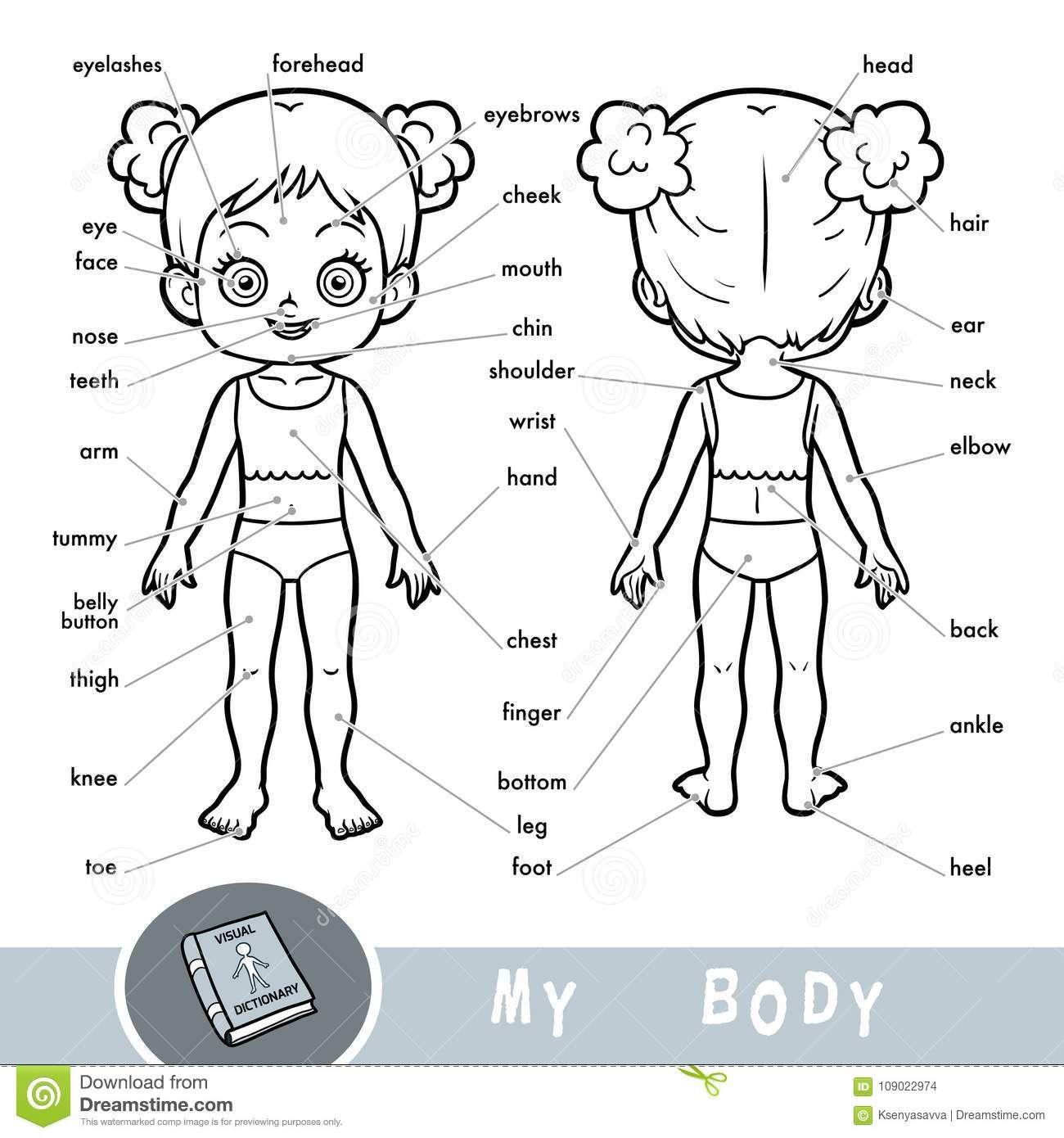 pin su il corpo umano