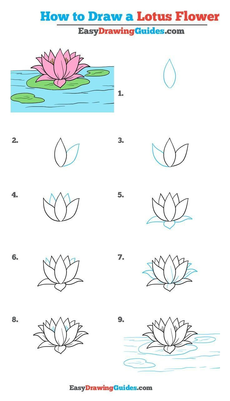 How To Draw A Lotus Flower Really Easy Drawing Tutorial Lovely
