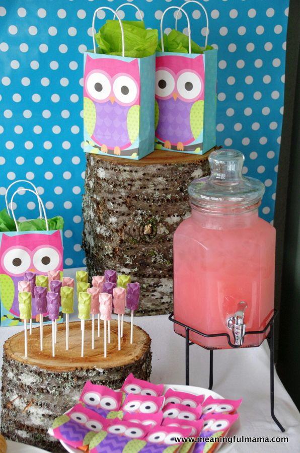 Owl Party Ideas Owl Party Decorations Owl Parties Diy Owl