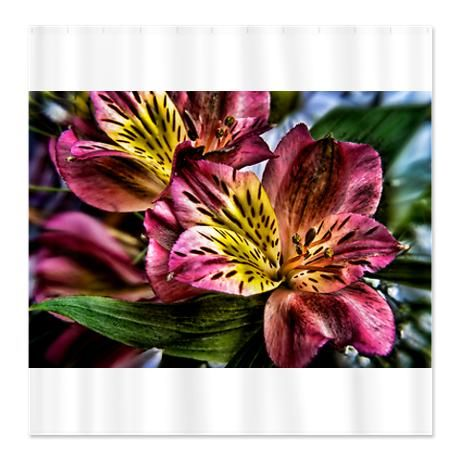 Peruvian Lily flowers Shower Curtain