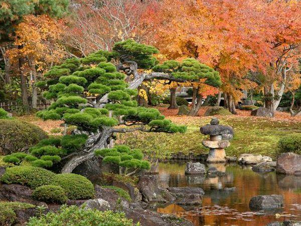 Historia de jardines jard n oriental estudio de for Jardin oriental