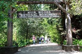 Muir Woods.  The park is open every day of the year at 8 AM, including all holidays.  Cafe on site.