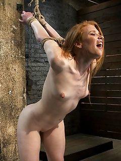 Bdsm porn photo