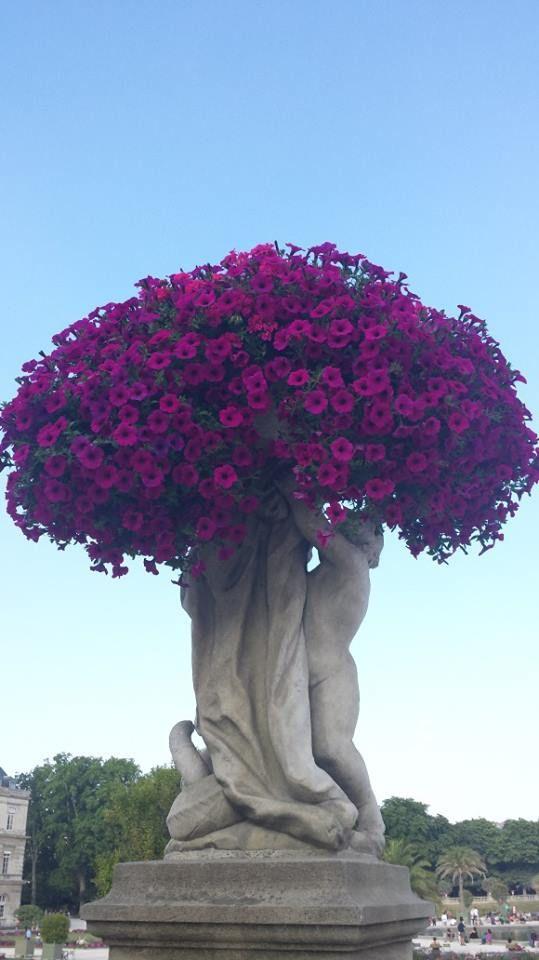 Paris escultura e flores!!!!!!!!!