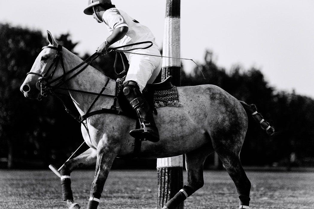 San Diego | the polo society