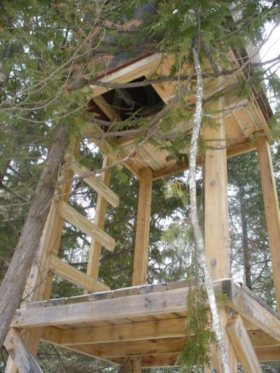 Homemade Tower Deer Hunting Stand Deer Hunting Tips