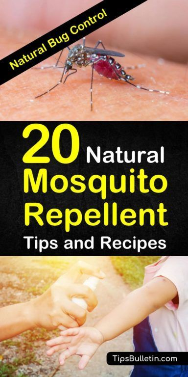 20 Natural Mosquito Repellent Tips and Recipes - Natural Bug