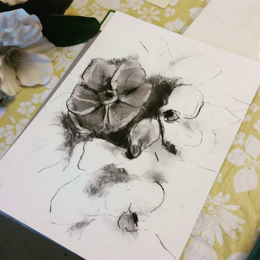 Flower For The Demonstration Flower Charcoal Gardenia Drawing