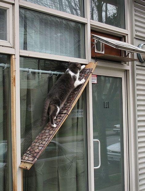 Brett mit Katzenklappe fürs Badezimmerfenster