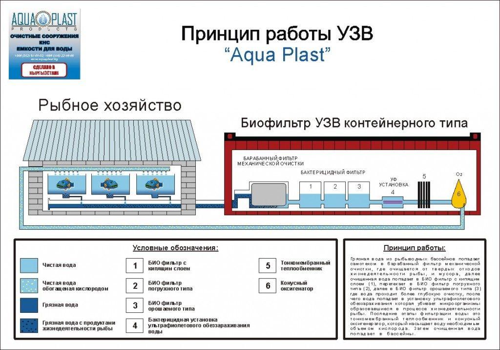Узв для выращивания рыбы схема оборудования своими 385