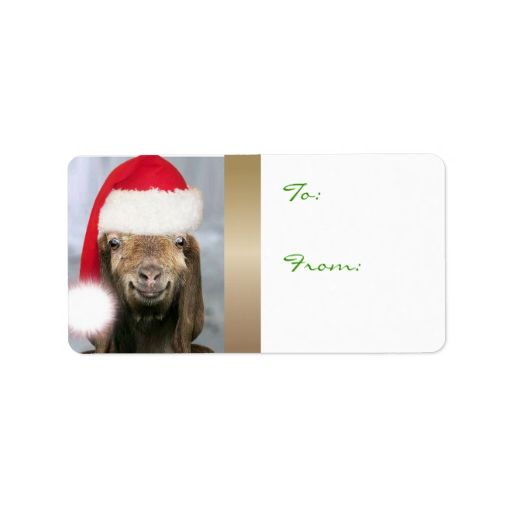 YOUR GOAT PHOTO Goat Christmas Gift Tag Address Label