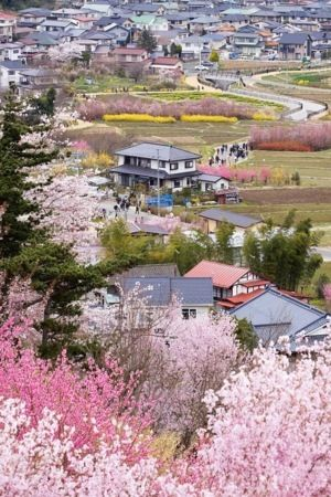 Download free Village Of Spring IPhone Wallpaper Mobile Wallpaper contributed by jensengets, Village Of Spring IPhone Wallpaper Mobile Wallpaper is uploaded in iPhone Wallpapers category.