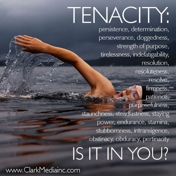 Persistence Motivational Quotes: TENACITY: Persistence, Determination, Perseverance