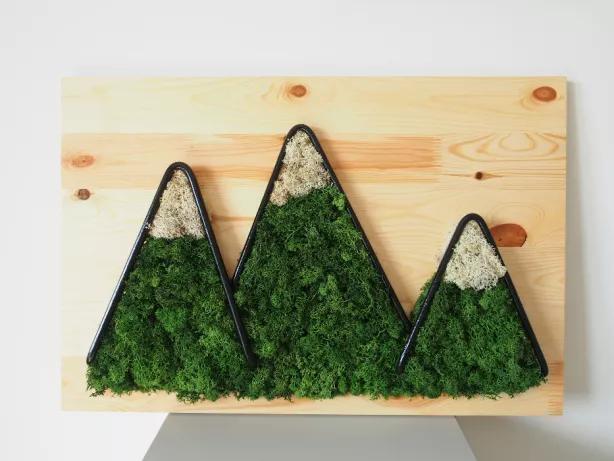 Zielony Obraz Instalacja Gory Mech Chrobotek Na Sciane 40x60cm Olawa Olx Pl Moss Wall Art Moss Wall Crafts