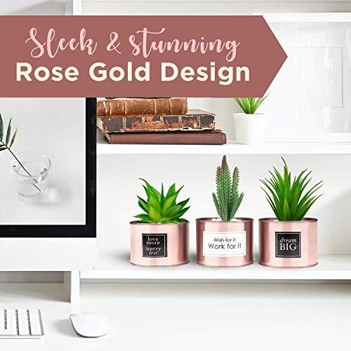 Photo of Rose Gold Polished Artificial Plant Holders, Office Desk, Bookshelf, Kitchen Decor