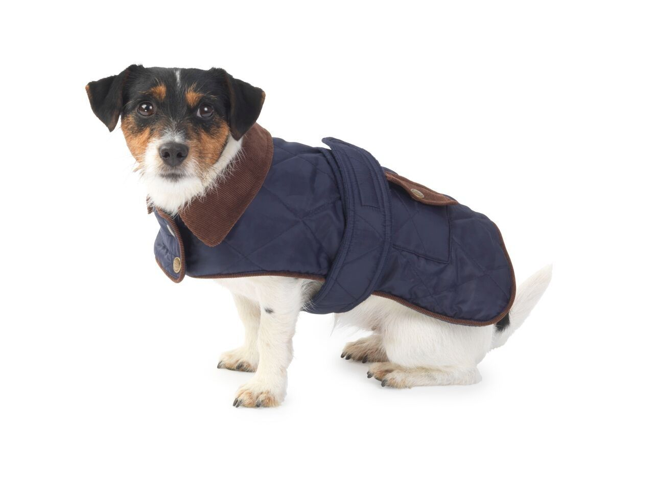Navy Quilted Waterproof Dog Coat by House of Paws | Albert ... : quilted dog coats for winter - Adamdwight.com