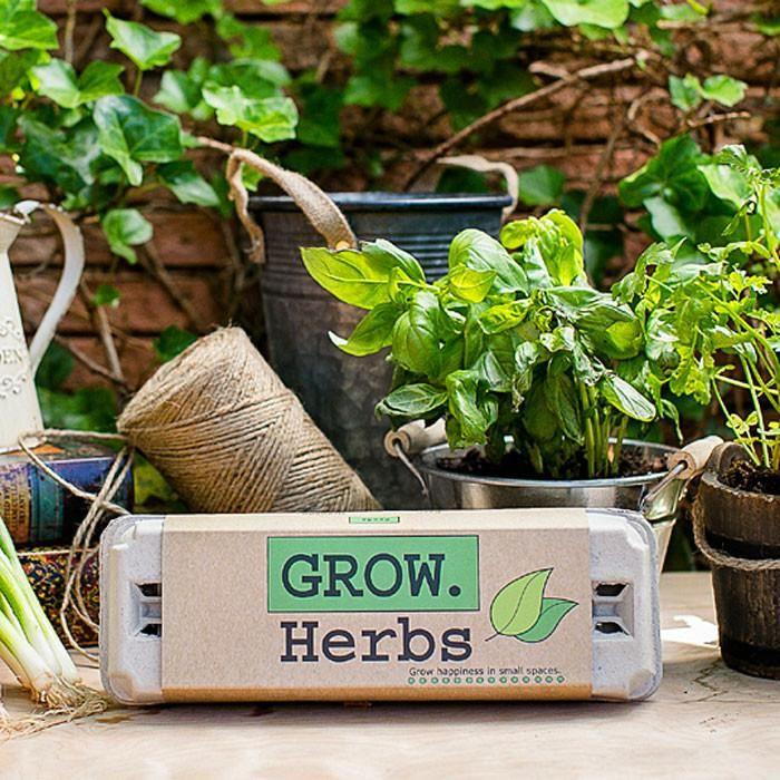 Grow Gardens Herbs Kit Herb