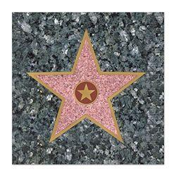 hollywood star beverage napkins httpwwwpartycheapcomstar_beverage_napkins_p