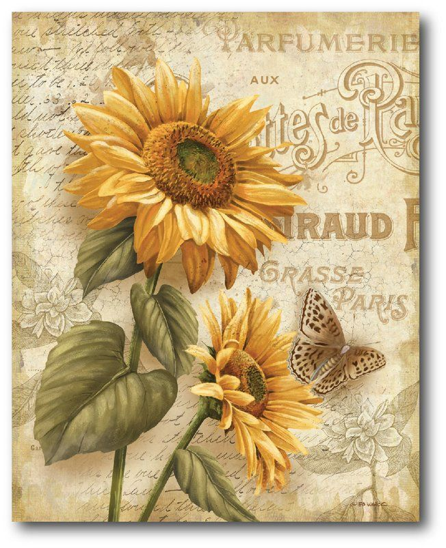 Country Flowers Ii Graphic Art On Wrapped Canvas Sunflower Art Decoupage Vintage Poster Prints