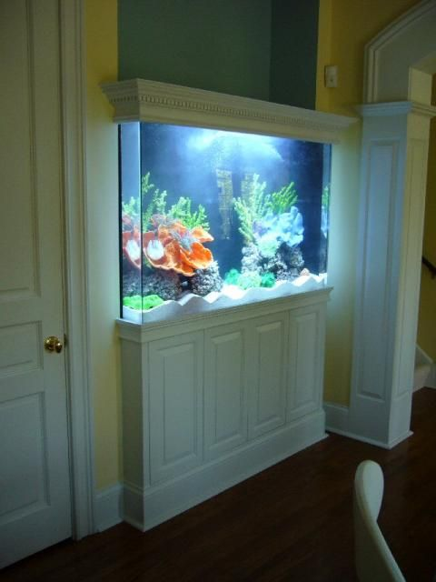 150 Gallon Custom Saltwater Aquarium Old Town Aquarium Aquarium Design Amazing Aquariums Fish Tank Wall