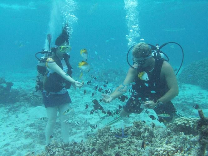 Guam has several scuba companies that specialize in beginner lessons for the curious, and they can also certify you all the way to mastery.
