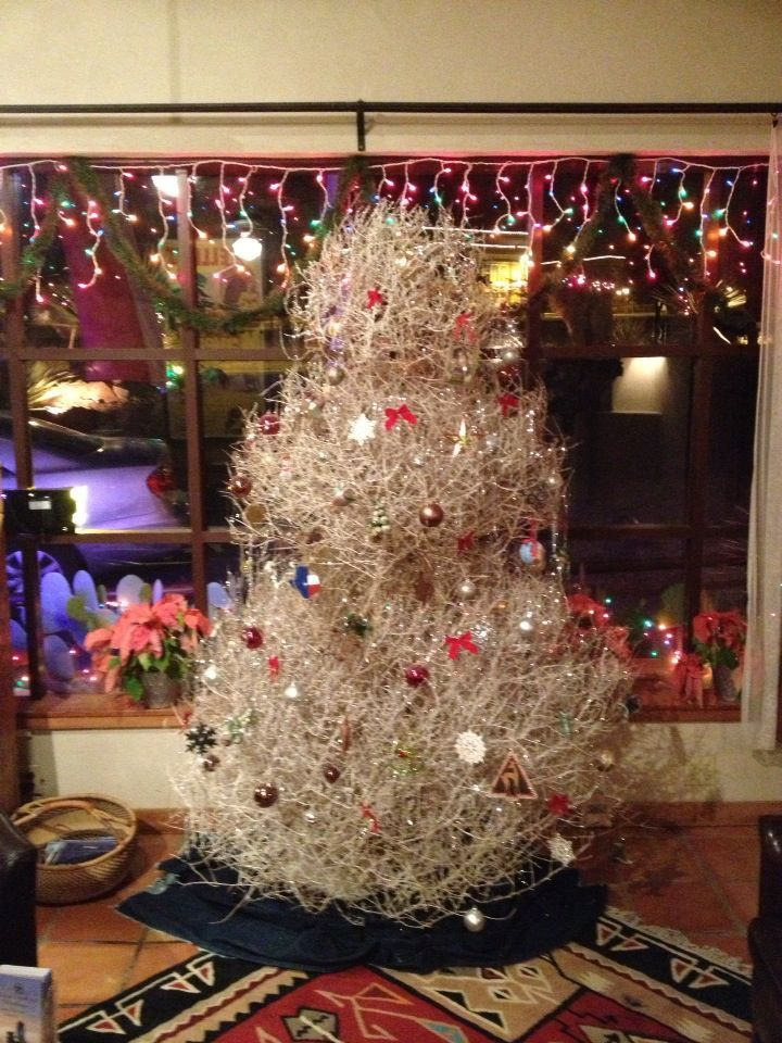 This says: Tumbleweed Tree, my grandmother used to do this. - DriedDecor.com - Interesting...This Says: Tumbleweed Tree, My Grandmother Used To Do