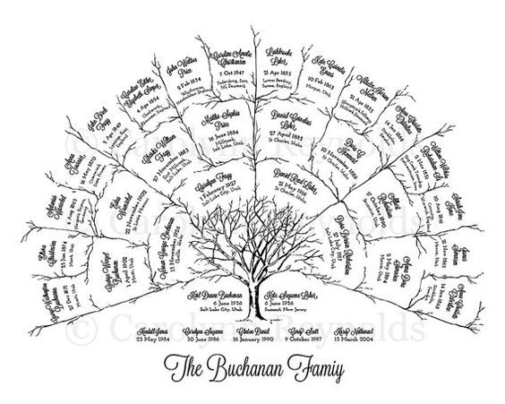 family tree charts to purchase