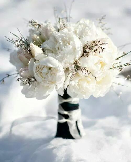 Winter bouquet