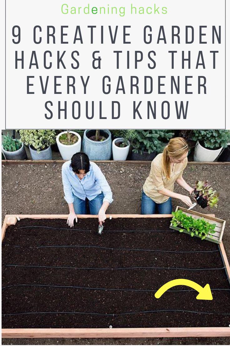 Garden Design Hacks