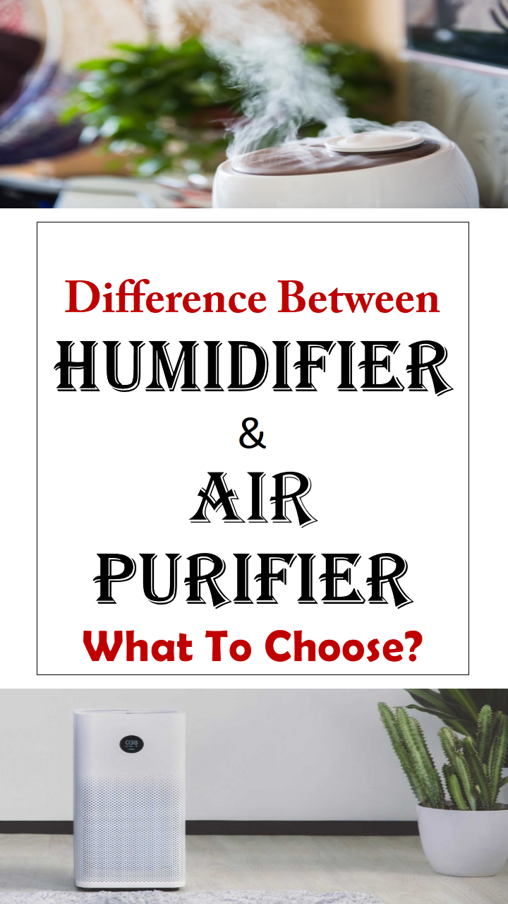 Humidifier Vs. Air Purifier What Is The Difference