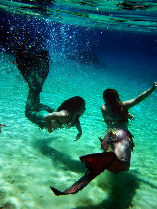 Mermaids- i have always wanted to be one in those big tanks in florida for tourists... life goal.