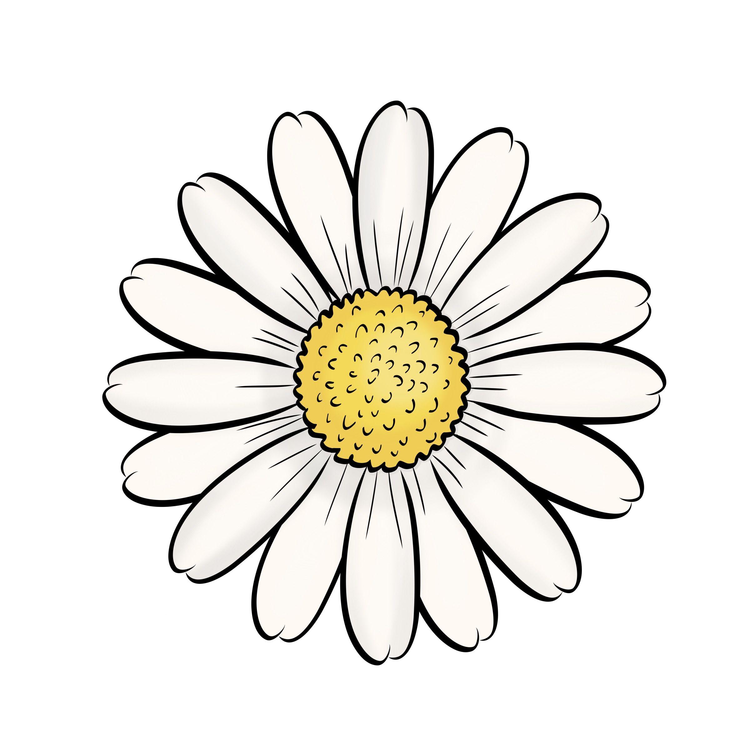 Pin De Cường Quốc Em Ao Margaridas Desenho Desenhos Pequenos