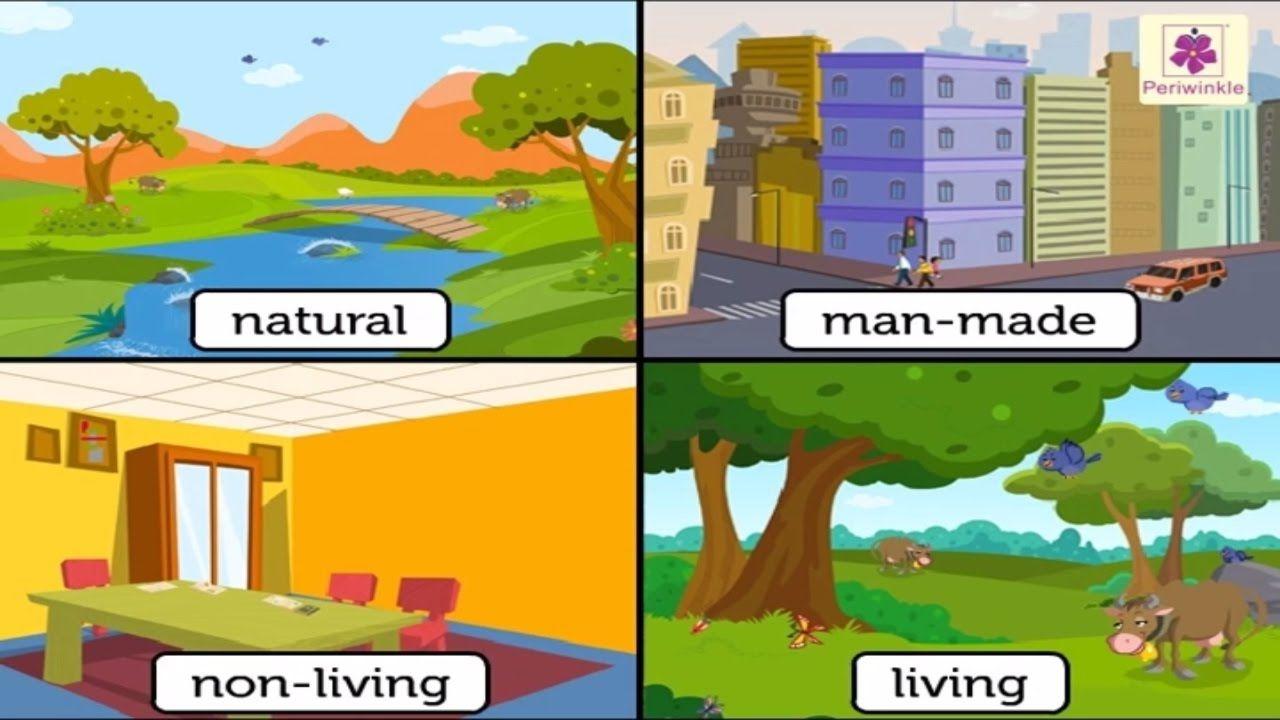 Natural And Man Made Things Environmental Studies For Kids Grade 3 Environmental Studies 2nd Grade Worksheets Science And Nature