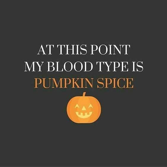 Thank Goodness For Nationalpumpkinday On What Other Day Would We Be Able To Celebrate Our One And Only Pumpkin Spice Fl Fall Fun Halloween Quotes Happy Fall