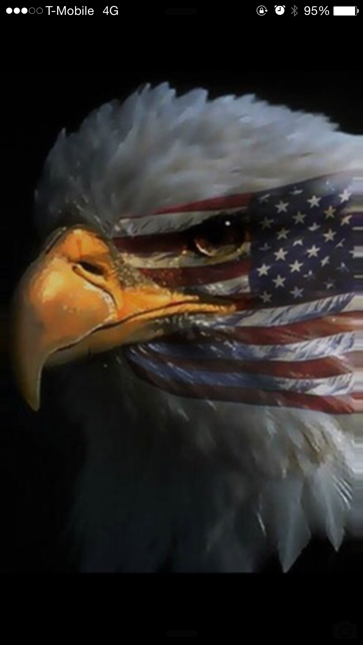 Pin By Kjspoo On Eagles Eagle Pictures Patriotic Pictures Eagle Images