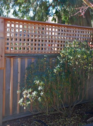 DIY : Privacy Fence   Trellis Added To The Top Of The Fence Panels To Add